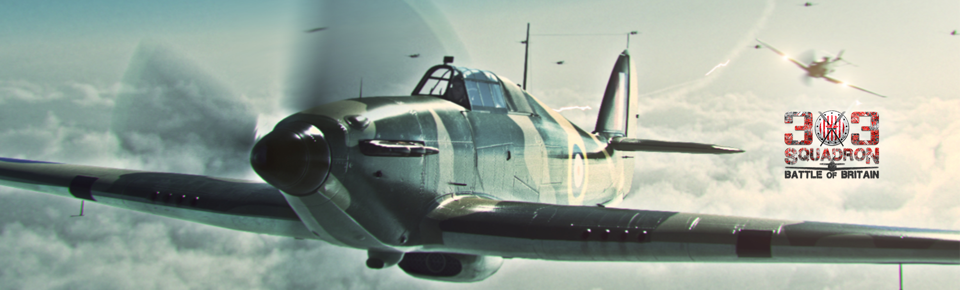 Banner-303-squadron